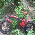 LEEF8620-1 Электрический складной велосипед